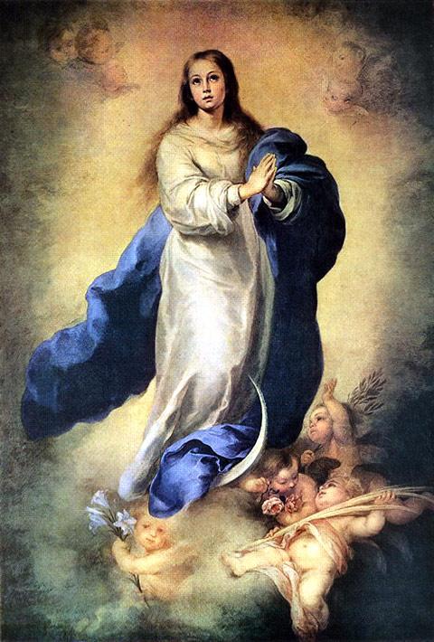 Risultati immagini per Immacolata Maria