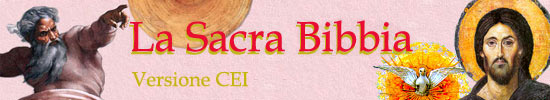 Matrimonio Romano Versione Latino : Liturgia della chiesa cattolica maranatha